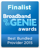 Best Bundled Provider Finalist 2015 graphic